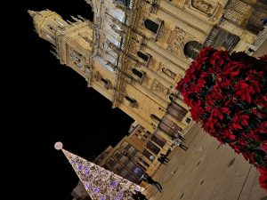 Christmas tree and cathedral in Plaza Santa Maria, Jaen