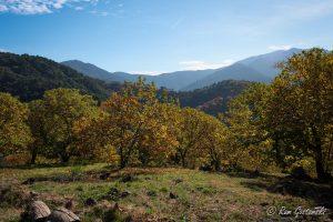 The Sierra Bermeja in late November