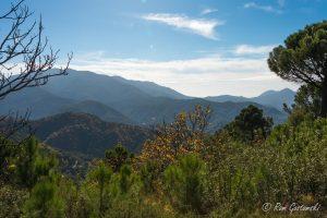 Misty view of the Sierra Bermeja
