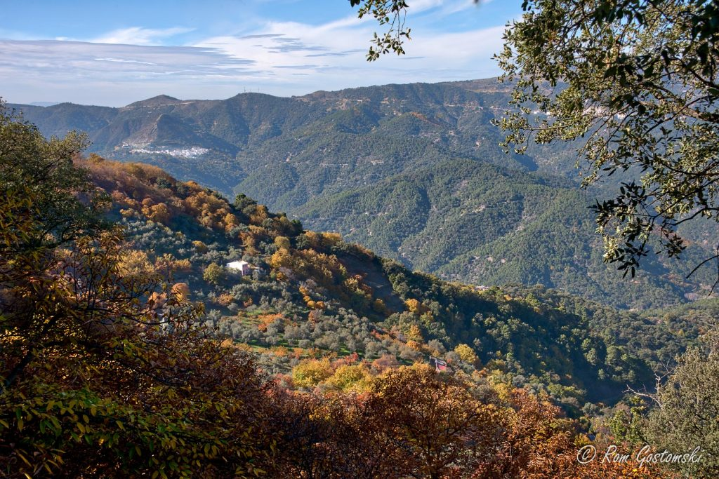 Views of Sierra Bermeja and the wonderful colours of autumn