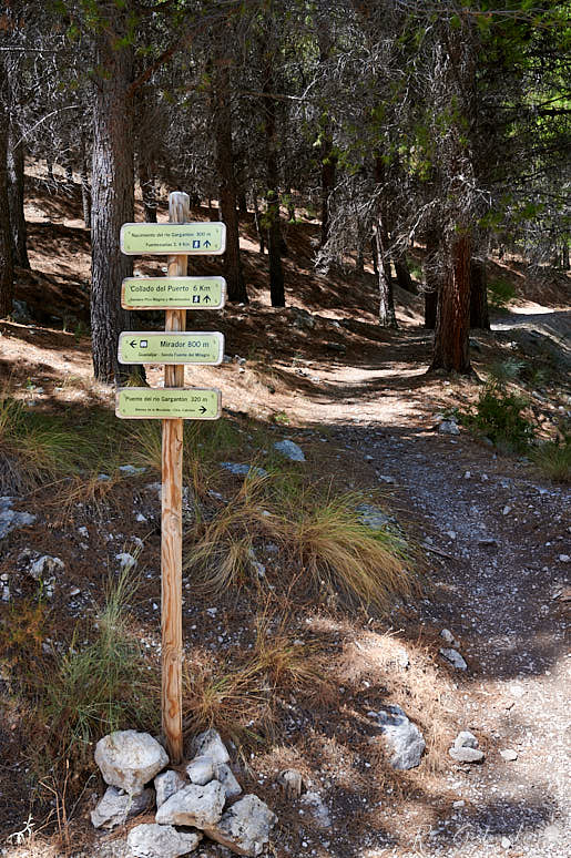 A signpost showing some of the available walks
