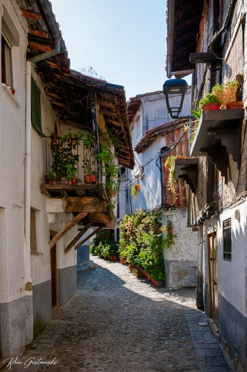 Another street in Hervas with pot plants on balconies, in window poxes, outside their houses...