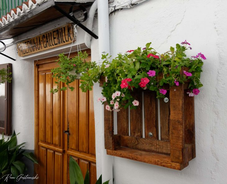 A mini pallet converted into a planter and fixed to the wall